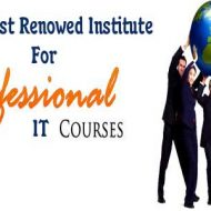 Intaglio Solutions – The Most Renowed Institute For Professional IT Courses