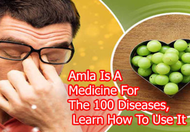 Amla Is A Medicine For The 100 Diseases, Learn How To Use It